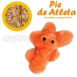 Microbio Xigante teddy - Trichophyton Mentagrophytes (pé de atleta)