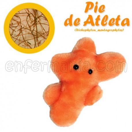 Microbi Giganti teddy - Trichophyton Mentagrophytes (piede dell'atleta)