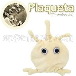 Mikrobio Erraldoi teddy - Thrombocyte (plaketa)