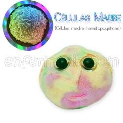 Microbo teddy Gigante di CELLULE STAMINALI
