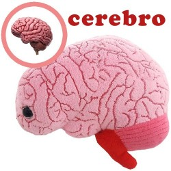 Giantmicrobes (peluche) - Cervello