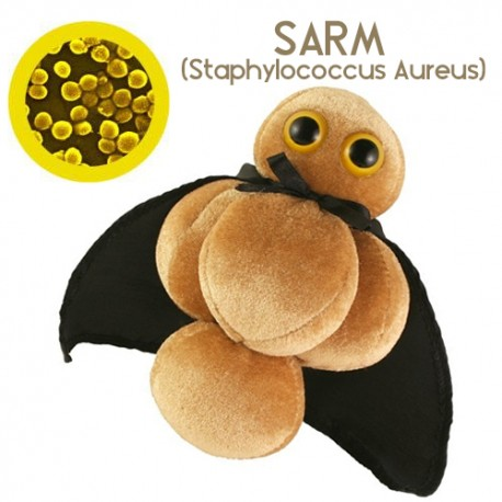 Microbe Giant teddy - MRSA