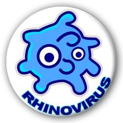 Sheet Rhinovirus
