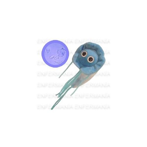 Microbi Gegant de peluix - Giardia Lamblia