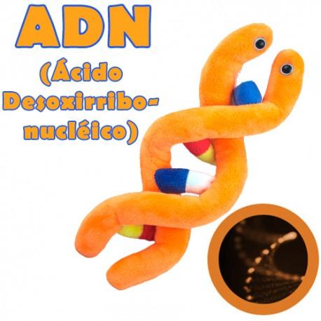 Giantmicrobes - DNA