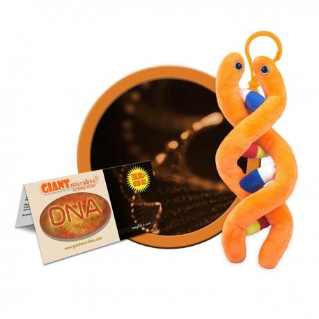 Keychain Giantmicrobe - DNA...